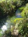 Ruisseau de Ribarrouy