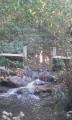 Le ruisseau des Salles