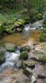 Les Trois ruisseaux à Saint-Genis-les-Ollières