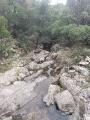 Le ruisseau du Révérencier