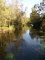 Entre rives sauvages du Loiret et vergers à Saint-Hilaire-Saint-Mesmin