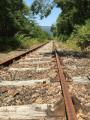Le saut de la Saule - voie ferrée de Riom-es-Montagnes vers Bort les Orgues