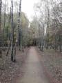 Le sentier au départ du parc des Dolines de Limère