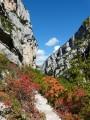 le sentier aux couleurs de l'automne