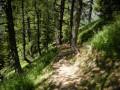 Le sentier de descente