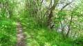 Le sentier du retour longe la Loire