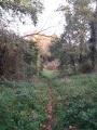 Le sentier longe la rive sauvage de la Loire