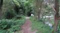 Le sentier suit la Conie