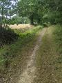 Le sentier vers La Langrais