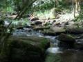 Gorges du Trinquelin