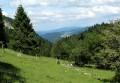 Le Val de Morteau