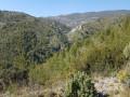 Le vallon de Dausserand
