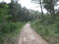 Le vallon de Maurel