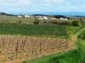 Preixan dans les vignes et les champs