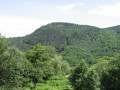 """Le Volcan d'Aizac ... dit couramment """"Coupe du Volcan d'Aizac"""""""