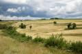 Les champs de Chalmette