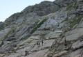 Les dalles avec des traces de dinosaures