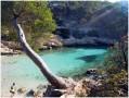 Les Calanques de Port Miou, Port Pin, En Vau au départ de Cassis