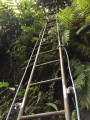 Les échelles
