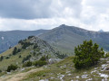 Collada del Vent - Puig de la Collade Verda - Collada de Roques Blanques