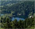 Les lacs du Neuweiher - 845m
