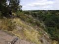 Les landes au dessus du ruisseau de Boutavent