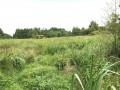 Circuit des Marais de Blanche Noë