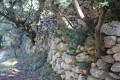 Murs de pierre