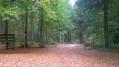 """""""Les portes"""" de la Forêt Domaniale de Sedan"""