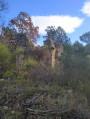 Les ruines de Pellegrin