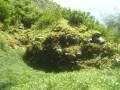 Les zone rocheuse