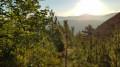 Lever de soleil en montant au Col de Comte