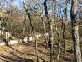 Vers l'Observatoire de Haute Provence
