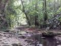 Lit de la rivière