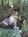 Circuit de la Fontaine aux Oiseaux