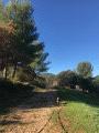 Forêt de La Penne-sur-Huveaune