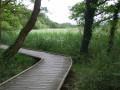 Marais de la Goden et bord du Blavet