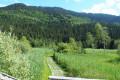 Marais du Pontet