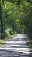 Marcheurs sur le chemin de halage