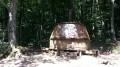 La Forêt de l'Aiguille des Cammazes