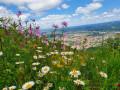 La passerelle d'Hautpoul à Mazamet