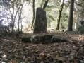Menhir de Fixard