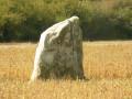 Menhir de la Pierre Couvée