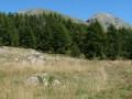 Mont Capelet Superieur et Inférieur