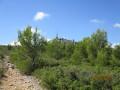 Le Mont du Marseillais par la Cride