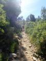 Mont Paon, Vallon de Lèque à Fontvieille