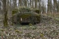 N°6 Observatoire d'artillerie de Heidwiller