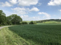 End of the Chilterns : Pegsdon Hills & Little Offley