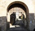 Les balcons du Mont Caylus