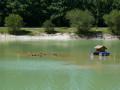 La cabane des canards du lac Vert